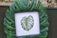 Bilderrahmen Blatt grün