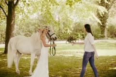 Weddingplaner bei der Arbeit Pferd