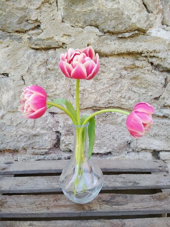 Vase mit Rillen